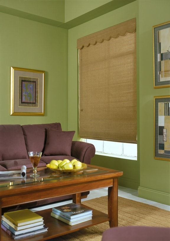 Cocoa Window Blinds The Blind And Shutter Company